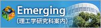 bn_emergingjp
